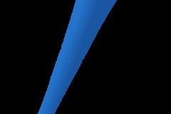 Vuvuzuela